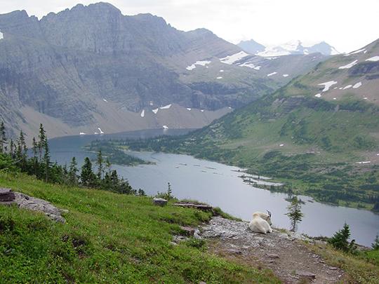 glacier-natl-park-027