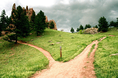 Manna for Your Morning: Choose the Narrow Road